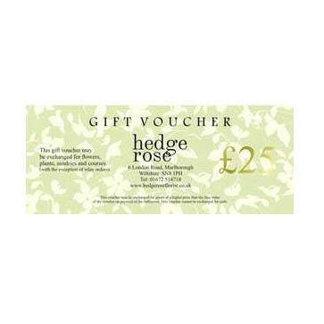 Gift-voucher-£251 copy